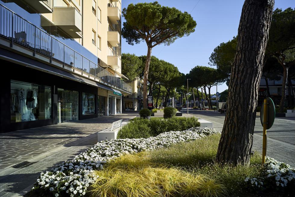 Picture of Viale Matteotti